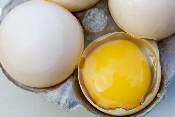 Duck Eggs: Nutrition, Benefits, and Side Effects